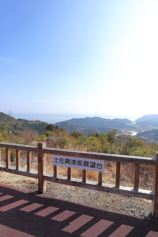興津海水浴場へ_a0077663_18494558.jpg