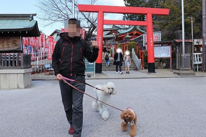 犬山城へ~。_b0111376_15011566.jpg