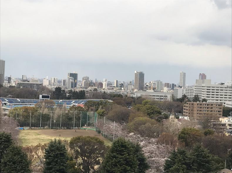 桜色のネイルを塗った日に_f0378589_14305121.jpg
