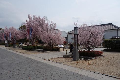 徳川園_a0152501_06543427.jpg