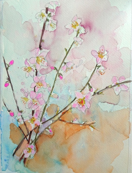 桃の水彩画_f0035506_21181958.jpg