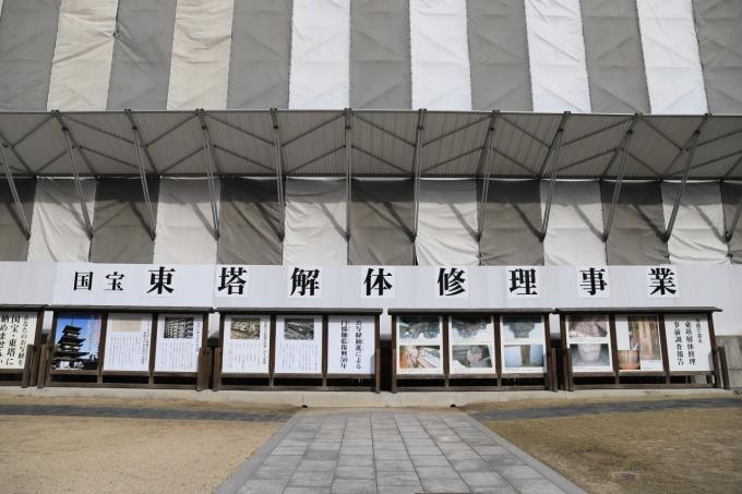 【薬師寺/白鳳伽藍】奈良旅行 - 3 -_f0348831_23422794.jpg