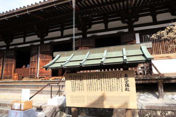 【薬師寺/白鳳伽藍】奈良旅行 - 3 -_f0348831_23433579.jpg