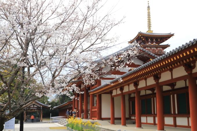 【薬師寺/白鳳伽藍】奈良旅行 - 3 -_f0348831_23434177.jpg