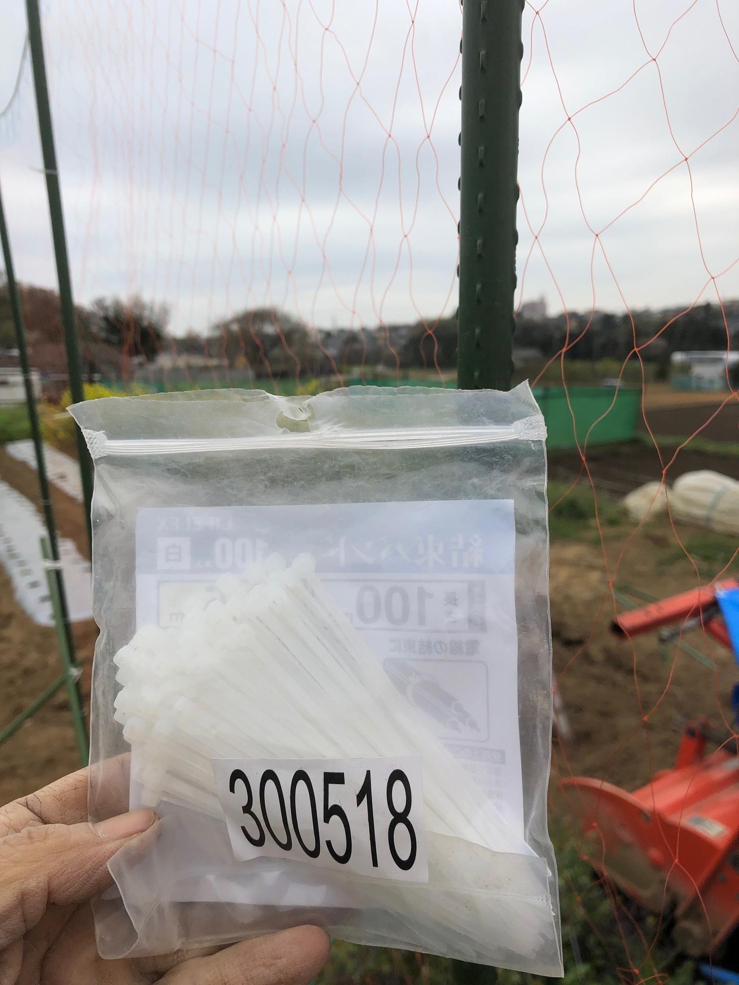 苗床ズッキーニ本葉出始めました 蚕豆の防鳥ネット張り なかなか先に進まない・・_c0222448_11490805.jpg
