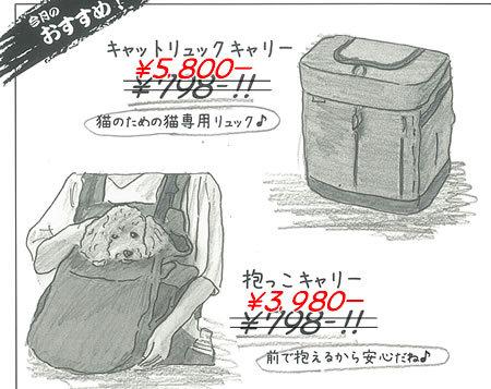【お詫び】_e0362456_19541071.jpg