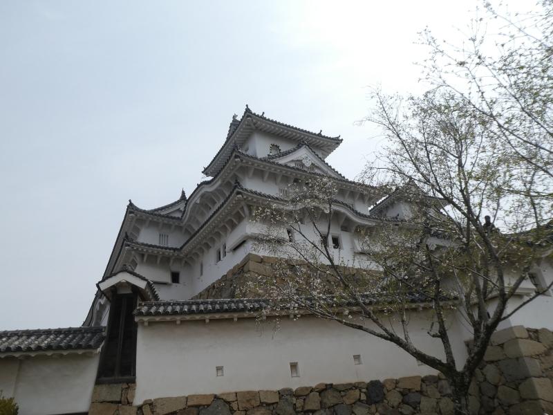 姫路城散策・・・孫と一緒に_c0108460_21405075.jpg