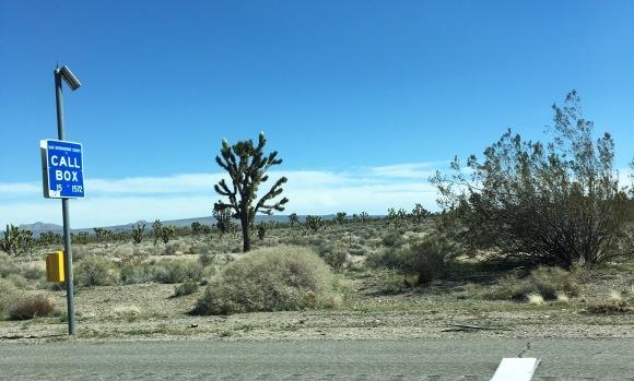 ラスベガスへの旅-カリフォルニアから脱出_e0350971_09135059.jpeg