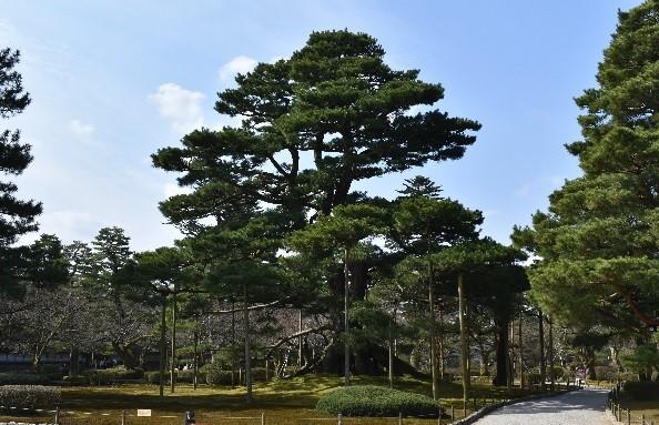 金沢の風景。すっかり金沢が好きになりました。 _f0362073_16483919.jpg