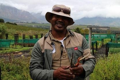 <南アフリカワイン旅行記>南アの文化-ごはんについて-_b0016474_16150617.jpg