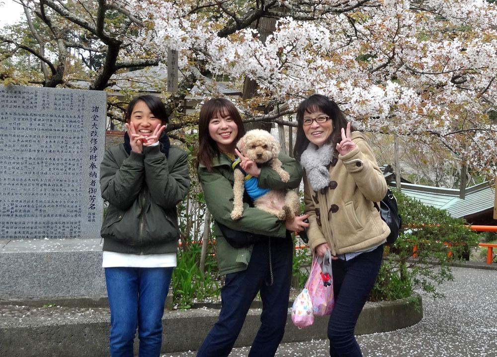 孫娘たちと八鶴湖の花見へ_b0114798_16293964.jpg