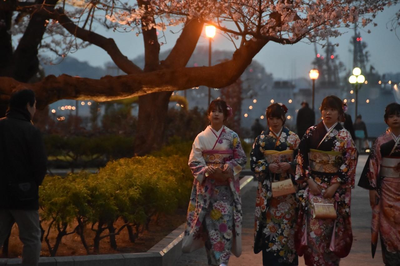 桜 2019 ヴェルニー公園 4_d0065116_22291492.jpg
