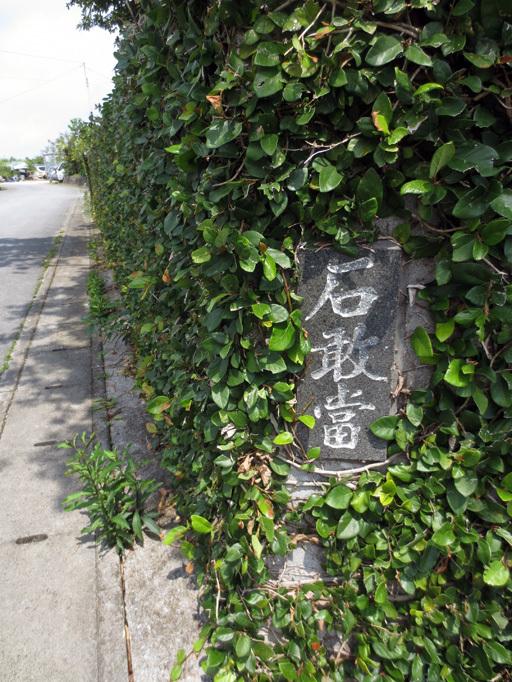 ■辺野古海岸で宝貝を探す――沖縄米軍基地ツアー_d0190217_21273134.jpg