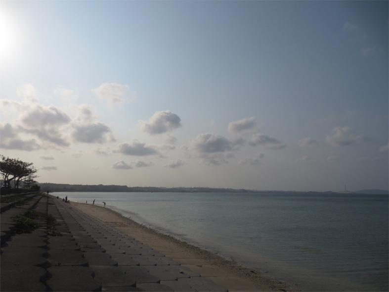 ■辺野古海岸で宝貝を探す――沖縄米軍基地ツアー_d0190217_21303885.jpg