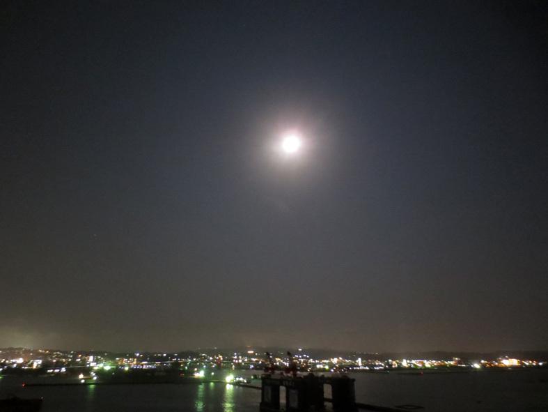 ■辺野古海岸で宝貝を探す――沖縄米軍基地ツアー_d0190217_21311077.jpg
