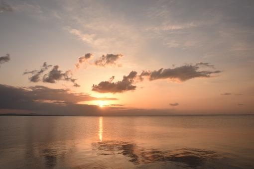 海辺の翌朝2019.03.29_b0259218_06024489.jpg