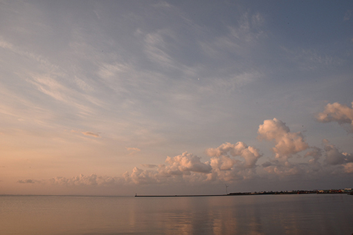 海辺の翌朝2019.03.29_b0259218_06025178.jpg