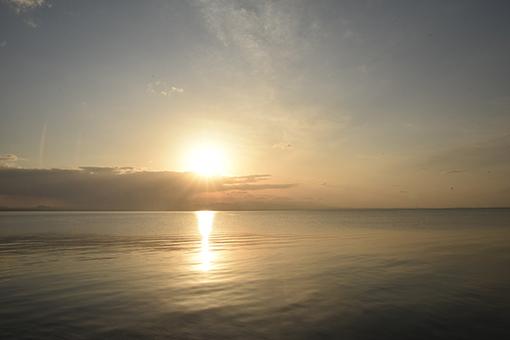 海辺の翌朝2019.03.29_b0259218_06025793.jpg