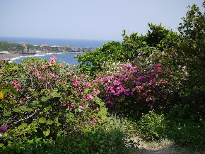 沖縄本島北へゆく旅5 比地の神アシャギ_e0359436_13320035.jpg
