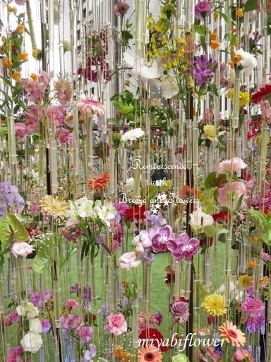 都心の春:東京ミッドタウン日比谷 『花の輪舞』-RONDE- _b0255144_15143422.jpg