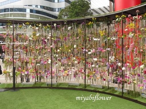 都心の春:東京ミッドタウン日比谷 『花の輪舞』-RONDE- _b0255144_15150013.jpg