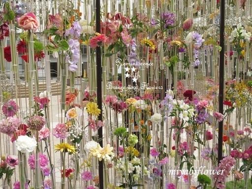 都心の春:東京ミッドタウン日比谷 『花の輪舞』-RONDE- _b0255144_15152830.jpg