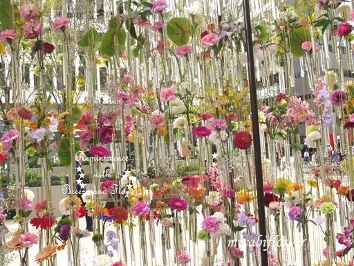 都心の春:東京ミッドタウン日比谷 『花の輪舞』-RONDE- _b0255144_15153391.jpg