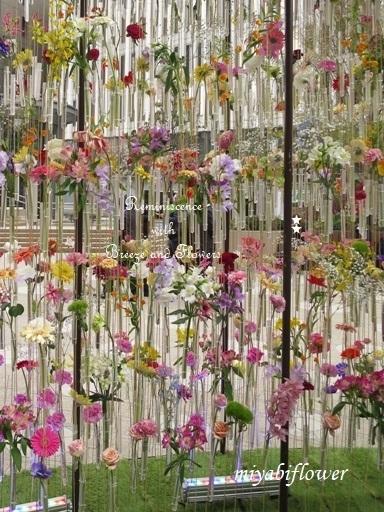 都心の春:東京ミッドタウン日比谷 『花の輪舞』-RONDE- _b0255144_15160005.jpg