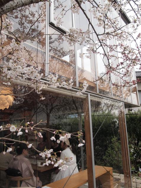 20190330 円山生活の会「円山ステッチの桜でお花見会」_d0145345_21471425.jpg