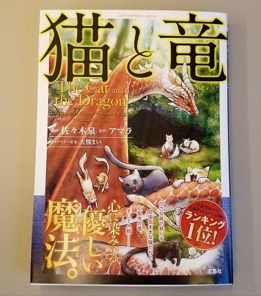 猫と竜♪_c0151053_17465657.jpg