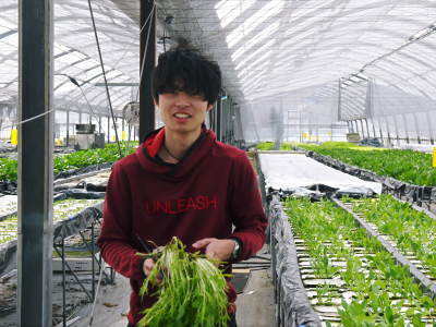 水耕栽培の新鮮野菜 朝採り新鮮野菜を即日発送!無農薬栽培の生野菜!今なら全商品がそろってます!_a0254656_18042245.jpg
