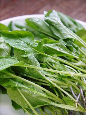 水耕栽培の新鮮野菜 朝採り新鮮野菜を即日発送!無農薬栽培の生野菜!今なら全商品がそろってます!_a0254656_18231929.jpg