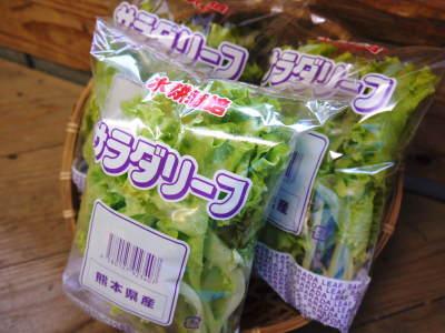 水耕栽培の新鮮野菜 朝採り新鮮野菜を即日発送!無農薬栽培の生野菜!今なら全商品がそろってます!_a0254656_18290355.jpg