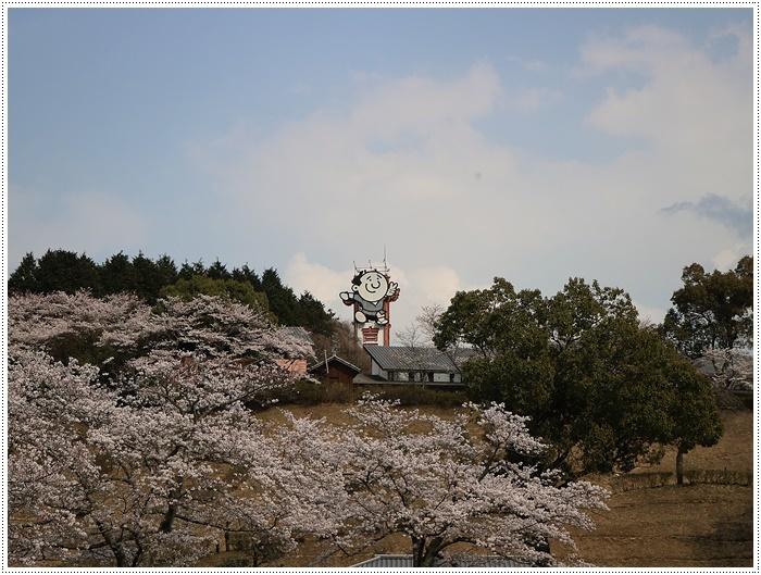 県南はもう桜満開、やっぱり桜は春を代表する日本の象徴みたいなお花ですね~毎年見ててもうっとり。。_b0175688_20273354.jpg