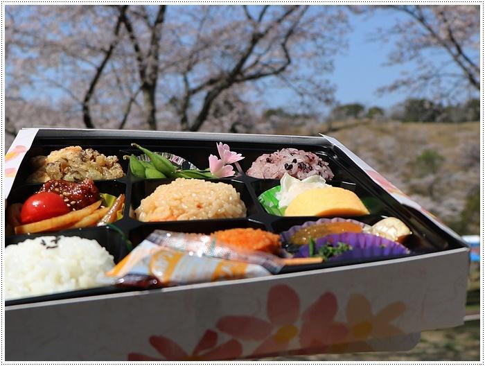県南はもう桜満開、やっぱり桜は春を代表する日本の象徴みたいなお花ですね~毎年見ててもうっとり。。_b0175688_20332278.jpg