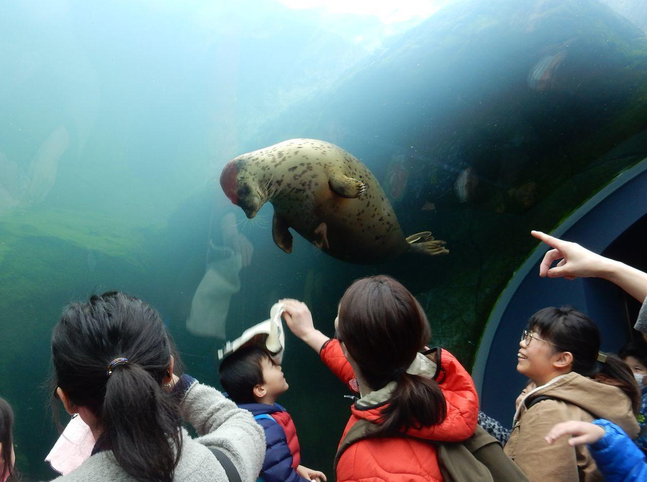 早春の円山動物園_c0025115_22532263.jpg