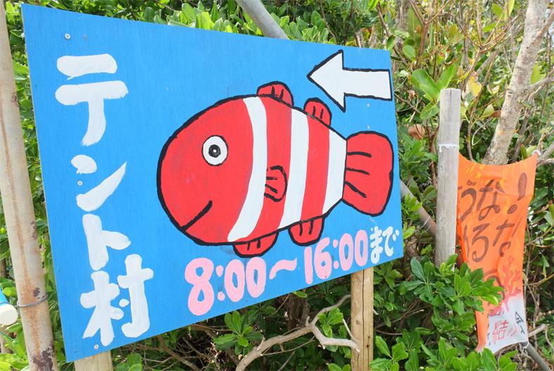 ■辺野古海岸で宝貝を探す――沖縄米軍基地ツアー_d0190217_16014507.jpg