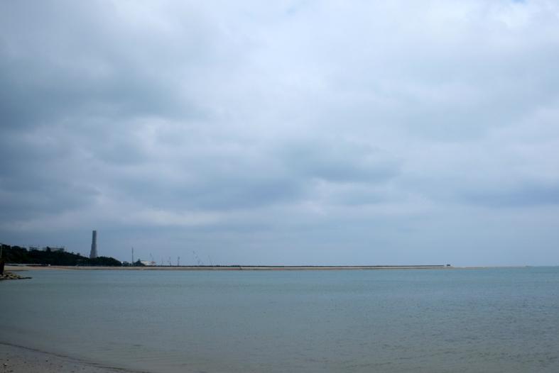■辺野古海岸で宝貝を探す――沖縄米軍基地ツアー_d0190217_16062308.jpg