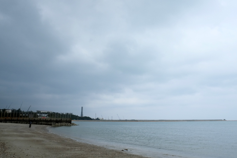 ■辺野古海岸で宝貝を探す――沖縄米軍基地ツアー_d0190217_16063551.jpg