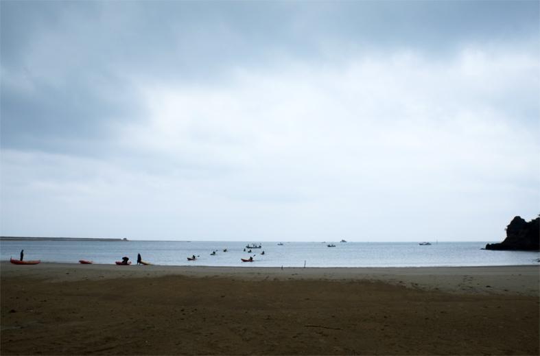 ■辺野古海岸で宝貝を探す――沖縄米軍基地ツアー_d0190217_16071455.jpg