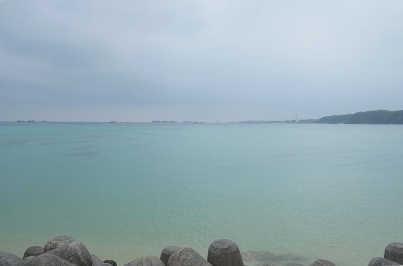 ■辺野古海岸で宝貝を探す――沖縄米軍基地ツアー_d0190217_16072641.jpg
