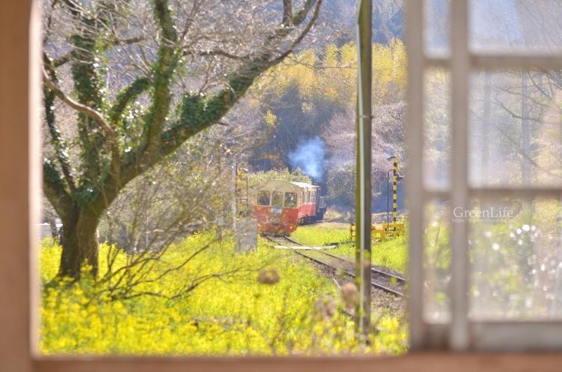 さよならムーミン列車_f0321522_23443758.jpg