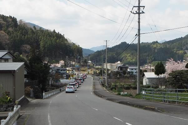 徳島県神山町:明王寺のしだれ桜と、江田の菜の花_b0149340_21040835.jpg