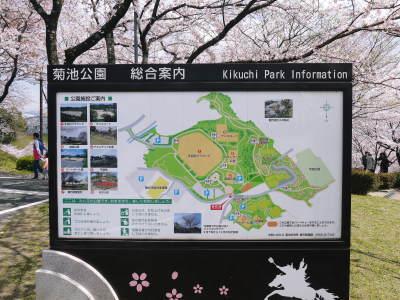 菊池公園、菊池神社の桜photoコレクション 2019_a0254656_18185818.jpg