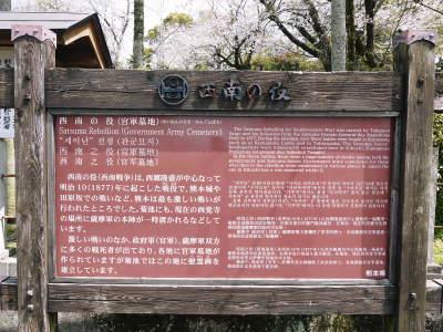 菊池公園、菊池神社の桜photoコレクション 2019_a0254656_19042150.jpg