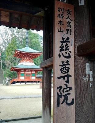 お花見ウォーキング~高野山黒河道_b0194861_20052656.jpg