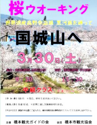 お花見ウォーキング~高野山黒河道_b0194861_21591457.png
