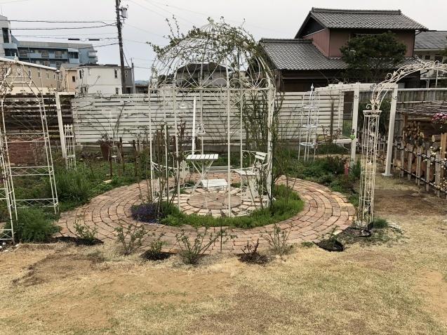 バラのガゼボを囲うレンガ道にバラ苗「ヴァネッサ・ベル」「ジ・エンシェント・マリナー」を植えました_a0243064_16050682.jpg