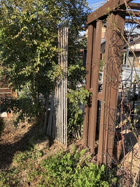 バラのガゼボを囲うレンガ道にバラ苗「ヴァネッサ・ベル」「ジ・エンシェント・マリナー」を植えました_a0243064_16494180.jpg