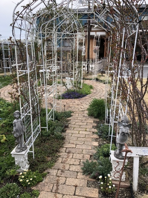 バラのガゼボを囲うレンガ道にバラ苗「ヴァネッサ・ベル」「ジ・エンシェント・マリナー」を植えました_a0243064_17133655.jpg